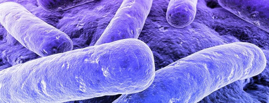 Lär dig mer om antibiotika och antibiotikaresistens